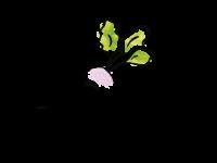 logo-04-01